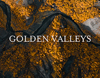 GOLDEN VALLEY / Iceland From Above VIII.