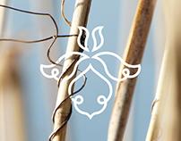 Kiskunhalas visual identity - concept