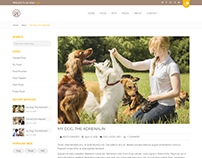Animer - Pet Sitter, Pet Shop, Animal Care Shopify Them