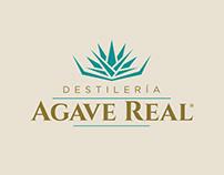 Agave Real branding