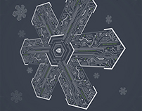 Circuit Snowflake