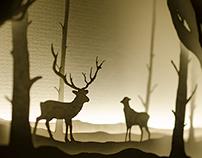 Serene Forest Lightbox