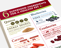 Spring Naturals Superfood Infographic