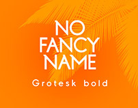 No Fancy Name Grotesk Bold