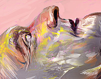 Buffalo Man (Portrait of Martin Gugino)