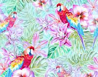Parrots In Paradise.