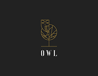 owl logo vol.3