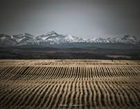 Southern Alberta landscape