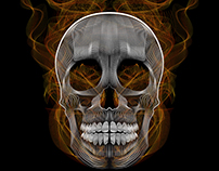 Blend Skull- Vector Illustration
