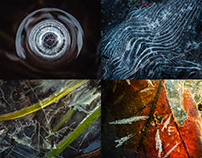 Abstract Views of Winter: A Colorful Journey