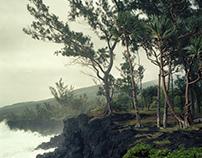 Tropics Part II