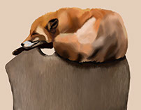 Digital painting practicing - foxes