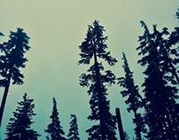 Oregon part two