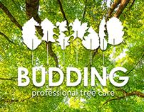 Budding Logo & Branding