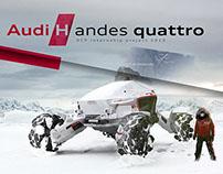 Audi H andes quattro