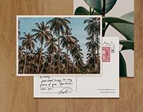 Isla Cabana // Branding