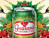 Guaraná - Campaña 2016