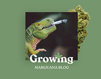 Growing marijuana blog & shop