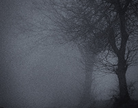 Ombres & Brouillards