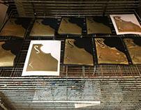 Screen Printing - Spring 18