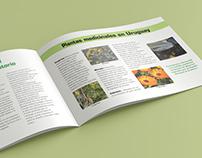 Plantas medicinales [Mini-revista]