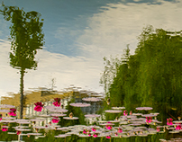 Abstract picture with water lilies