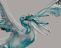 """Pelican island"" Book Cover"