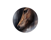 Horse portrait - digital painting