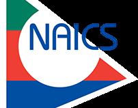 The NAICS Code System