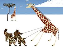 Capturing Giraffe