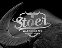 Stoer - Water Buffalo Farm Netherlands