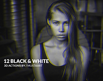 12 Black & White Actions 3D Edition