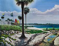 Miami's Beaches
