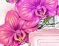 Illustration Parfum&Flowers
