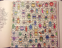 Beetles Wiki