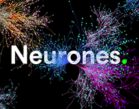 Colorpong.com - Neurones vector bundle