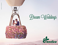 Exotica Weddings Campaign 2016