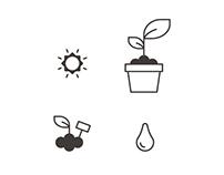 Icons Plants
