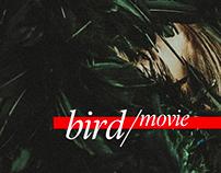 BIRD / Film by Dunja Jocic and Marinus Grothoof