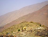 Sentiers d'Imlil   Maroc   Morocco