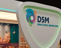 Stand DSM