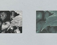 Texturas - Tinta da China