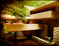 Fallingwater: Photography