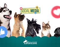 Social Media - Karecone Pet Shop