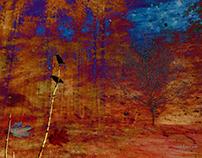 New Media - Woodland series