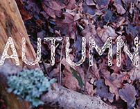 Seasonal Typography