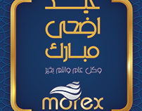 I Design this post for morex paints
