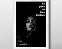 Poster for the novel