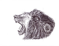 Lion Ballpen Drawing