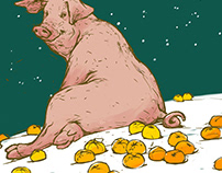 The year of the pig begins